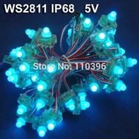 12mm 5v magic dream color ws2811 waterproof ip68 square shape addressable led pixel module led string light,50 pixels/string