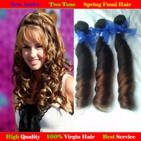 Malaysian virgin hair Spring curly Fumi hair Ombre two Tone 100% human hair extensions queen malaysian virgin hair 1B#/4#