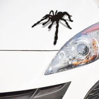 NEW car styling 3D spider sticker auto body decoration accessories car stickers for ford focus cruze subaru vw golf mazda3 cruze