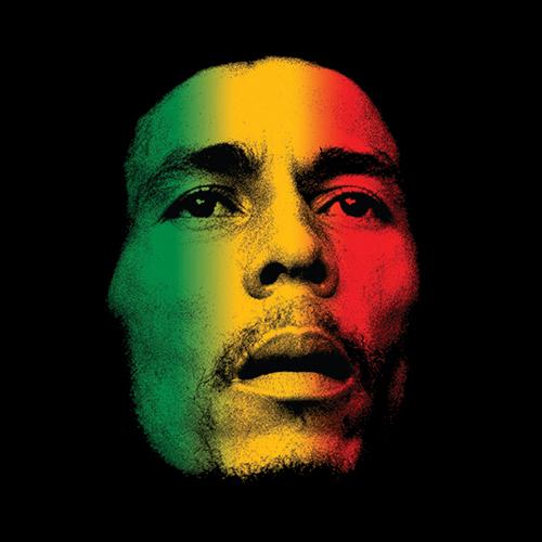 High Quality Bob Marley Rasta Face Raggie Casual Fashion T-shirt Tee Dress Camiseta Clothing T shirt Camisa(China (Mainland))