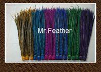 EMS Free shipping 100pcs mix 2 colors Pheasant Tail Feather 90-100cm lady amhurst pheasant tail Feathers For carnival