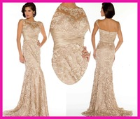 FCD11 2014 new lace Fashion Ladies Sexy Evening Dress Celebrity Dress champagne colour dress