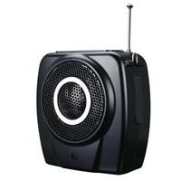 Takstar E9M Recreation Fitness loudspeakers wireless remote control multimedia recording FM megaphone support U flash TF Card