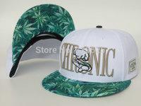 2014 Hot New Arrival Cayler & Sons Snapback Caps brand designer men women snap back hats cayler sons cap hip hop hat