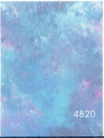 4820 High Quality 10ft*20ft Crushed Muslin  Fantasy Backdrop ,Idea Photography Backdrop fo Kids, Pets,  Studio, Custom Service