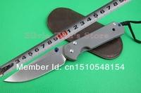Free shipping Chris Reeve CR 21th Classic Big Sebenza Plain Handle D2 Blade Steel Folding Knife