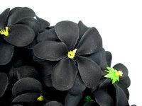 "Hawaiian Plumeria Frangipani Artificial Silk Flower Heads decoration 3""  ,BLACK"