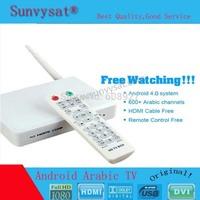 Arabic IPTV Box, 500 Plus IPTV Arabic Channel TV Box, Android 4.2 WiFi HDMI Smart Android Mini PC TV Box
