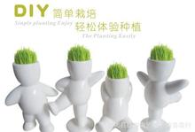 grass plant promotion