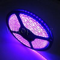 16FT 3528 LED Strip Purple Light 5M 600 LEDS SMD Waterproof 12V DC For Car