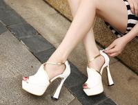 2014 new arrival korea summer ultra high heel sandals open toe cutout platform women sandals 828 - 15 free shipping