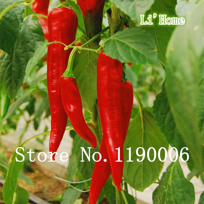 Popular pepper varieties aliexpress - Best romanian pepper cultivars ...