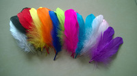 Wholesale 100 Pcs DIY Natural Fluffy goose Feathers 12colors home Christmas Cosplay decoration clothing shoes hat accessories