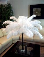 "wholesale 100pcs/lot 6-8"" White fluffy Ostrich Feather Plume wedding decoration"