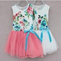 Free shipping girl dress 2-6 age  kids clothing dress flower pattern princess  tutu dress ,summer girls skirt  5 color