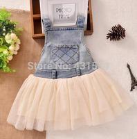 2014 new arrival fashion cute girls dress White princess tulle dresses children tutu for girls free shipping