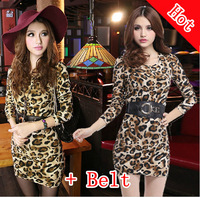 Retail New Spring 2014 Ladies Leopard Chiffon Sexy Dress Warm Fashion Maxi Mint Green Women Summer Dress Casual Brand Dresses