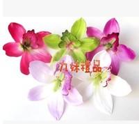 The simulationFaber Cymbidium Flower head DIY decoration spend 10 cm