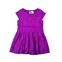 Wholesale 2014 New Kids Summer children girl's full lace purple one-piece dress, baby girls princess dresses, 5pcs/lot-WYX-BB-23