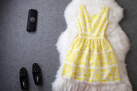 2014 brand new women's spring summer fashion wear European top brand fashion LACE dress  elegance party dress T1800