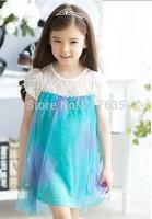 New 2014 frozen baby girl dress summer bebe Frozen Elsa princess lace dress baby & kids long sleeve chiffon dress infant wear
