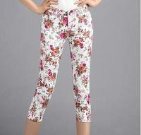 Shivering low-waist skinny Capris Women 3/4 length pants elasticity small cuff cotton zipper pockets colors 2014 women's clothes