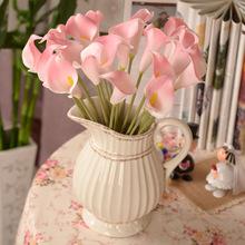 popular calla lily