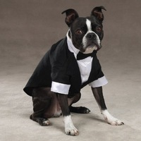 Handsome Formal Dog Clothes  with Bow Tie Groom Tuxedo Pet Costumes Dog Clothing 1pcs/lot Free Shipping