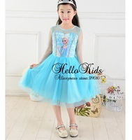 Retailer 2014 Elsa Dress Custom Made Movie Cosplay Dress Summer Girl Dress Frozen Princess Elsa Costume for Children GD40527-2B