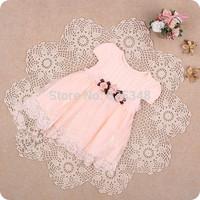 Retail-Brand IDEA Summer lace cute baby dress,Party Wedding Birthday baby girls dresses,princess infant dress TUTU baby clothing
