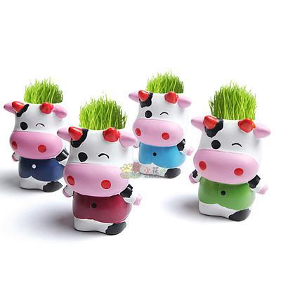 Flower planting grass mini plant pot fans / grass doll ( beef ranch ) G101683(China (Mainland))