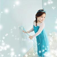 RETAIN2014New Frozen queen elsa girls princess dress Elsa's and Anna's dress Cosplay Costume Elsa Dress from Frozen for Children