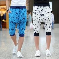 2014 men sports pants Harem pants men Capri street dance pants Hip hop pants for men Punk Fashion summer BG-13