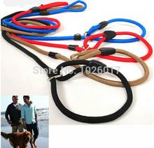 slip collar dog promotion