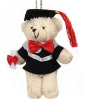 Free shipping  20pcs/lot Plush graduation bear. 15cm bear