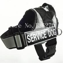 wholesale small dog training