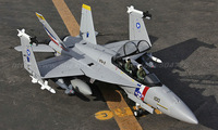 RTF Gray  Version / RC F-18 Hornet jet plane / Folding wing / With metal landing gear /  Ready To Fly