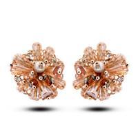 Free shipping high-end luxury OL temperament Austrian crystal earrings beaded earrings 2014530