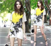 2014 American and European wash painting scrawl Printed Silk mulberry silk  Slim waist  short sleeve Dress