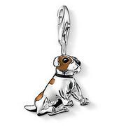 European Стиль Модный 925 silver Jack Russell hound pendant charms (1.2x2cm) fit ...