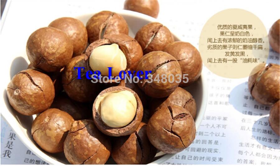 Fruit snacks kyle mp3 download