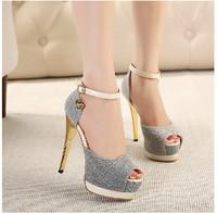 Free shipping  fashion hot women pumps 2014 new super beautiful  waterproof high heels  women shoes