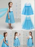 2014 New Frozen Elsa Dress Fashion Dreaming Multilayer Lace Tutus Princess Girls Dresses For Frozen Party Elsa Costume C25W01