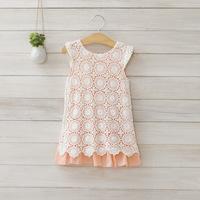 2014 New summer,girls princess dress,children lace dress,embroidery,cotton,pink/blue,2-8 yrs,5 pcs / lot,wholesale,1410