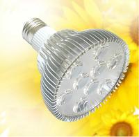 Super Bright Par30 LED Spot Light bulb, AC85-265V 9x1W par30 led lamp E27 Free Ship