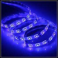 Waterproof 5M 300x3528 SMD Blue Light LED Strip Lamp (12V)