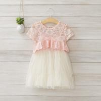 2014 New summer,girls lace princess dress,children 2pcs dress sets,embroidery,pink/blue,2-8 yrs,5 pcs / lot,wholesale,1414