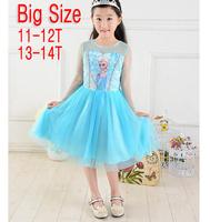 Retailer Big Size 2014 Elsa Dress Custom made Movie Cosplay Dress Summer Girl Dress Frozen Princess Elsa Costume for Children