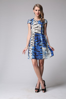 2014 Summer New Women's European and American High-end Printed Silk Dress Size L - XXXL 6073- Free Shipping