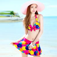 Swimwear female big small steel push up bikini dress 2014 spa piece set